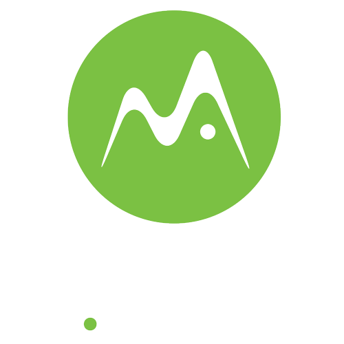 m.zoro Consulting Services